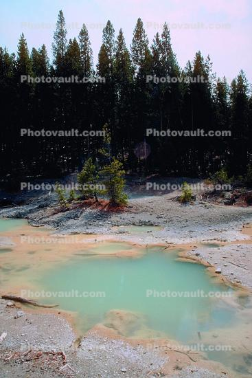 pond, water, trees, Hot Spring, Geothermal Feature, activity