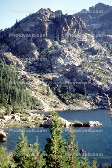 Salmon Lake, Sierra Buttes, Tree, east of Downieville