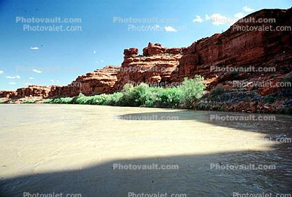 Colorado River, Trees, Water, shadow, silt, mud, muddy