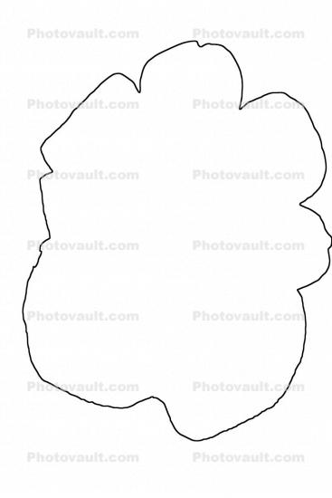 outline, line drawing, shape