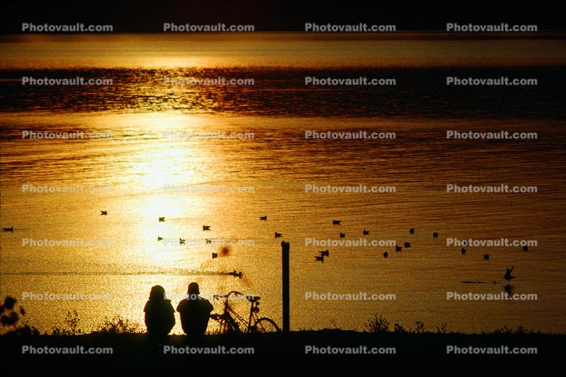 Couple, Bucolic, Tiburon, Marin County, California, Sunset, McKegney Field