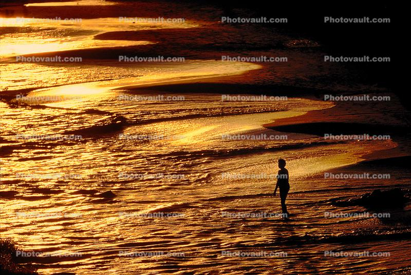 Woman in Sunset Colors in the Caribbean, Cancun, Mexico