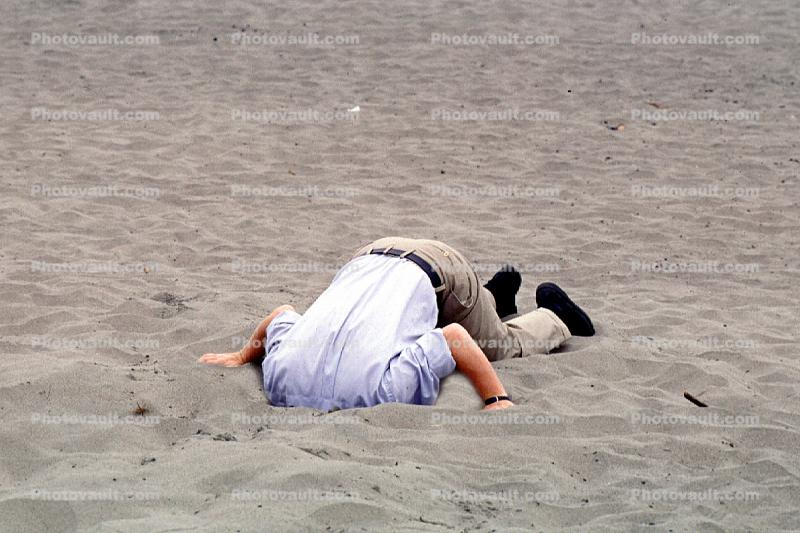 Head Buried in the Sand, Bury Your Head In the Sand, Businessman