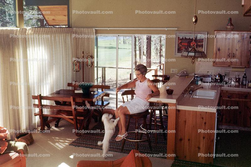 Woman at a Bar, Poodle, kitchen, dinning room