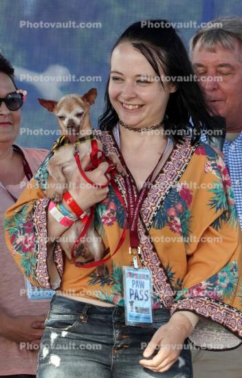 3rd Place Winner, World's Ugliest Dog Contest, Sonoma-Marin Fair, 21/06/2019