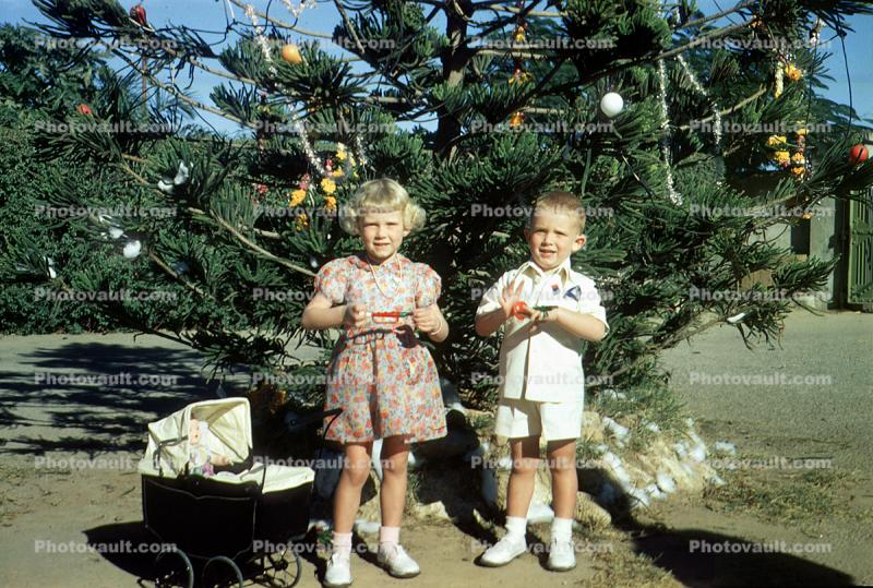 Sister, Brother, Carriage, Tree, December 25 1950, 1950s