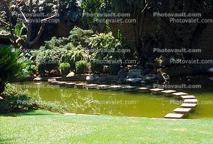 Pond, Stepping Stones, garden