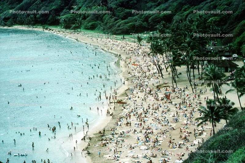 crowds, crowded, water, beach, sand, palm trees, coastal, coast, shoreline, seaside, coastline, 1985, 1980s