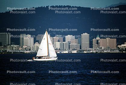 Sailing on The Bay, Cityscape, skyline, building, skyscraper, Downtown, Down town, Metropolitan, Metro, Outdoors, Outside, Exterior