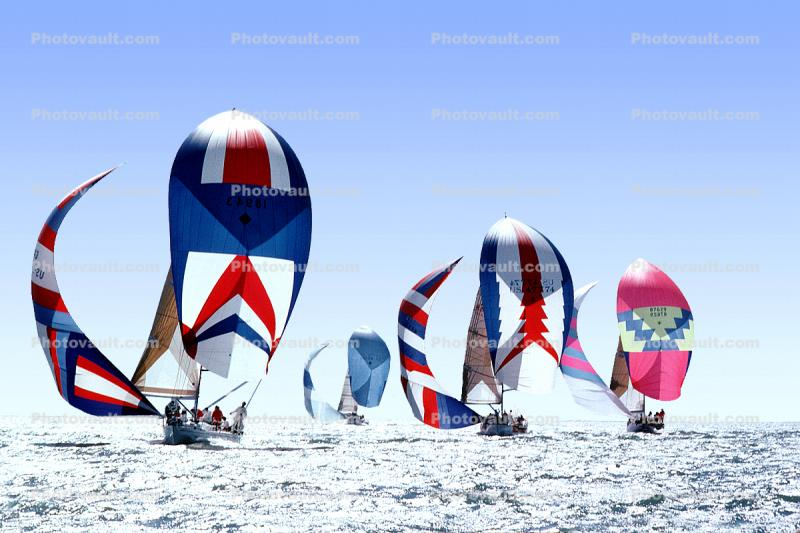 Spinnakers Billowing in the Wind