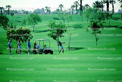 Teeing, Golf Cart, trees, golfers, Palm Springs