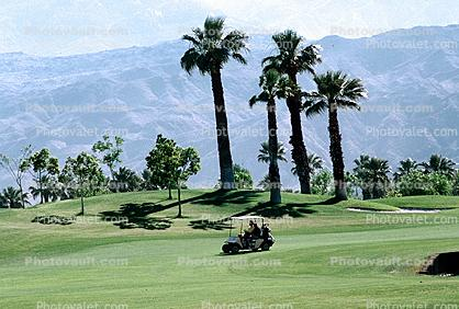 Golf Cart, mountains, Palm Trees, Palm Springs