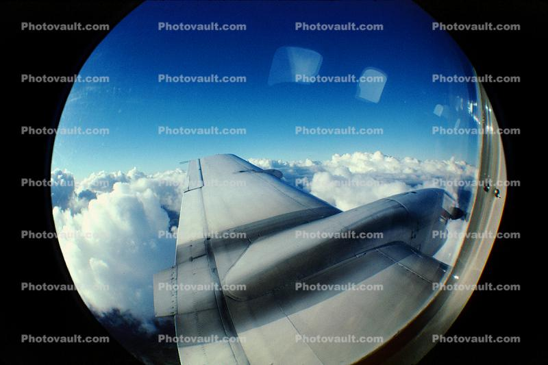 Lone Wing in Flight, Window, Embraer Bandeirante EMB-110