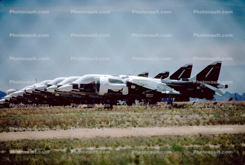 Shrink Wrapped Harriers