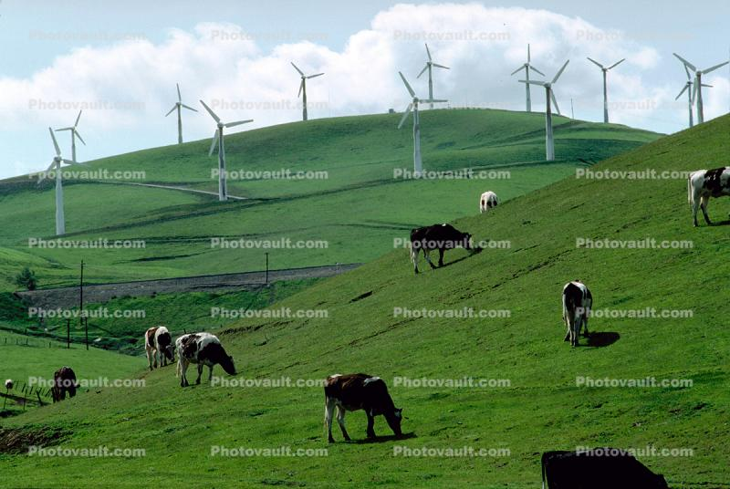 Hills, Altamont Pass, California