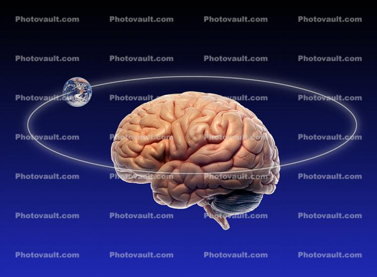 earth orbits brain