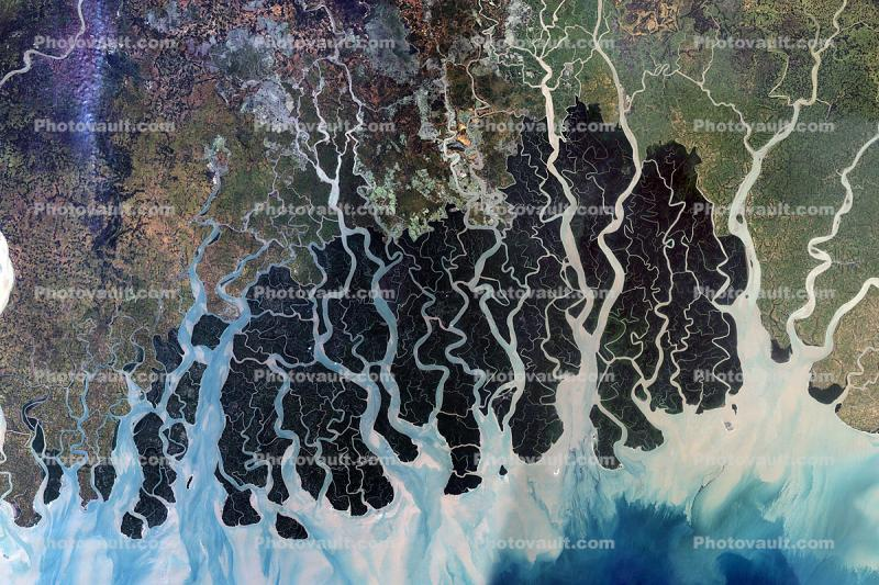 Sundarbans, Bangladesh, Ganges River Delta, India