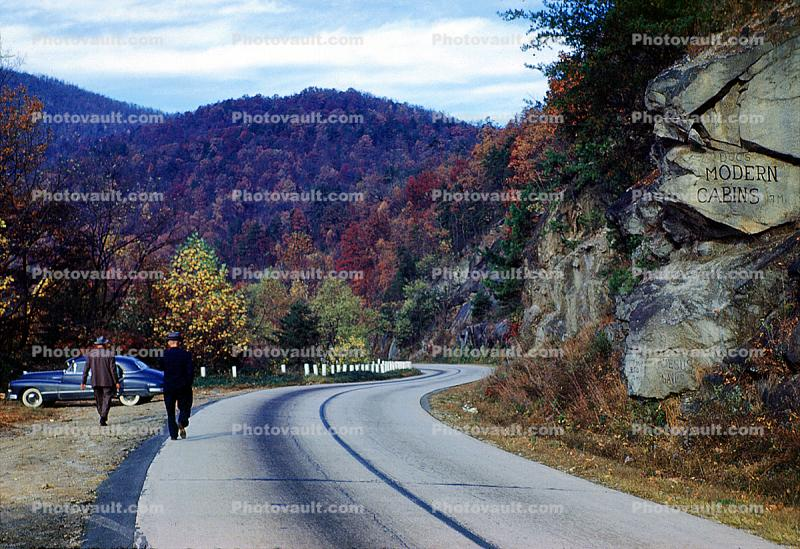 S-Curve, Highway, Roadway, Road, Fall Colors, Autumn, Deciduous Trees, Woodland, 1950's