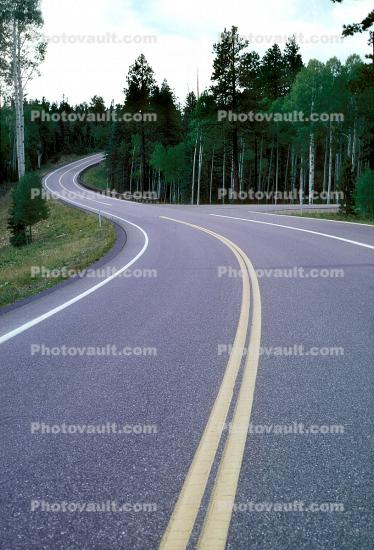 Road, Roadway, Highway-67, Grand Canyon National Park, North Side, Vanishing Point
