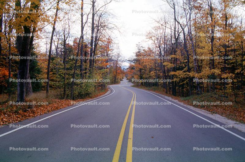 Door County, Road, Roadway, Highway, fall colors, s-curve, turn, Autumn