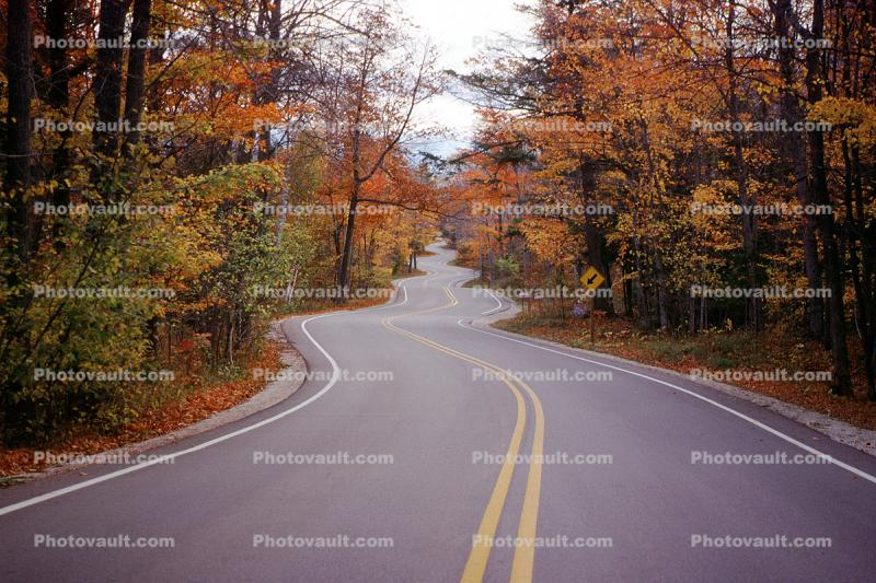 Door County, Road, Roadway, Highway, autumn