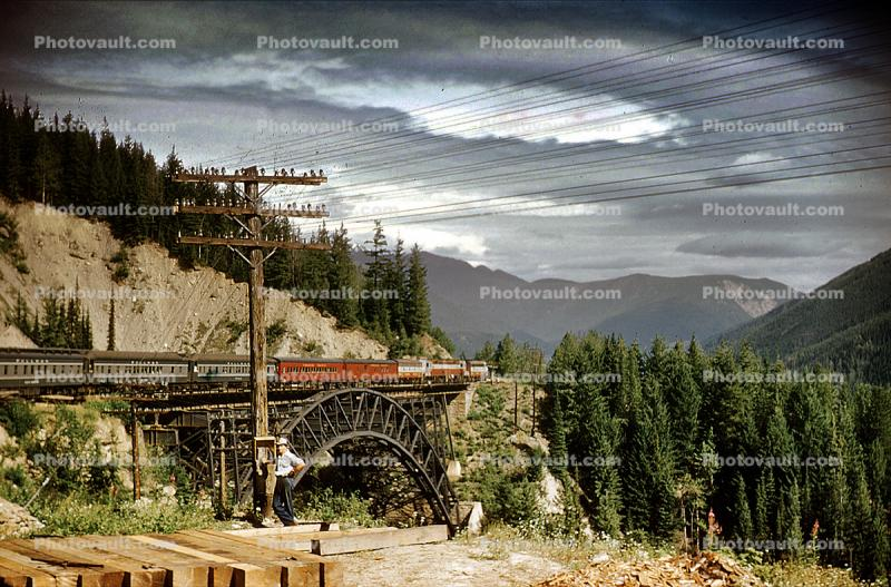 British Columbia, arch bridge, forest, 1959, 1950s
