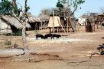Village, huts, Africa, Shanty Town, Grass Huts, ACFV01P05_08