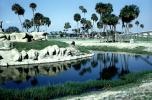 Moat, palm tree, AMZV01P02_11