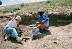 Maiasaurus excavation, Badlands, Montana, APDV01P14_06