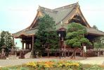 Temple, building, trees, garden