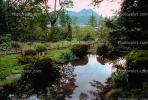 Peaceful Pond, Lake, garden, Nikko