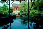 Garden, pond, stone, rocks, water, trees, Buddhist Shrine, Gotemba, CAJV02P12_03.3339