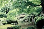 Gardens, arch, Taiko arch bridge, footbridge, trees, manicured bushes