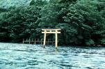 Torii Gate, trees, shore, shoreline