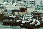 Tugboats, harbor, CAKV01P02_11B