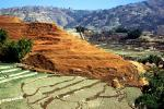 Rice Terrace, Hills, mountains, Kathmandu Valley, CANV01P15_17