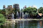Trees, Water Fountain, aquatics, Lake, Park, Buenos Aires