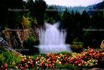 Garden, flowers, Water Fountain, aquatics, trees, The Butchart Gardens, Vancouver, CCBV01P01_15.1514