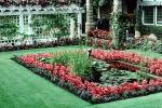 gardens, pond, lily pads, Butchart Gardens, Victoria, Toadstools, broad leaved plant