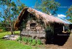 thatched roof house, Grass House, Home, Building, Sod