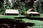 Home, Grass House, Jungle, rain forest, building, Guadalcanal, CDMV01P03_10