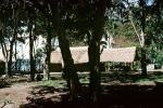 Home, Grass House, building, Guadalcanal, CDMV01P03_15