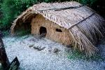 Grass Home, Hut, Maori Village, Thatched Roof House, House, Coromandel Peninsula, building, Sod, CDNV01P09_12