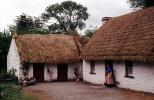 Grass Thatched Home, building, roof, Sod