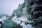 Bridge, River, Trees, Snow, Cold, Forest, Woodland, St. Moritz, Switzerland, 1950's, CESV01P08_03.1671