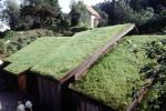 Home, House, Sod Roof, grass roof, building, CEVV01P08_11