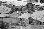 Man Walking on a Roof, pigeons, homes, houses, shantytown, Yerevan