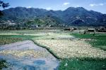 Village, Mountains, wet fields, Guangdong, CHRV01P02_02