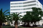 Bank Building, Palm Trees, palmtrees, Hamilton, CIEV01P02_14