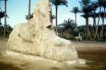 Sphinx, Donkey, Palm Trees, 1950s, CJEV01P04_01